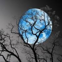 Blue Moon - A lua da Magia
