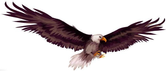 aguia-de-graca