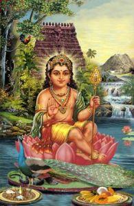 Kartikeya1