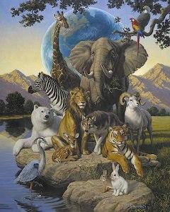 xamanismo animais